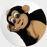 Mumbu the Monkey